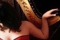 Harp solo (2)